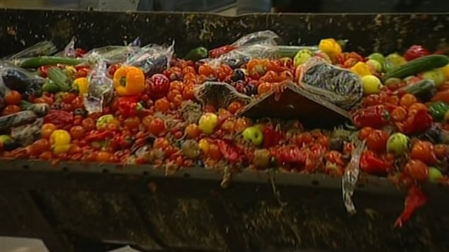 Une vraie honte: En finir avec le gaspillage alimentaire ! .... - Page 2 130625_bq7g1_bdsa_-gaspillage-alimentaire_sn635