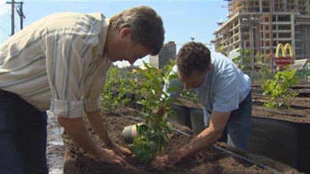 Le maire de Vancouver, Gregor Robertson, et le cofondateur de Sole Food, Michael Ableman