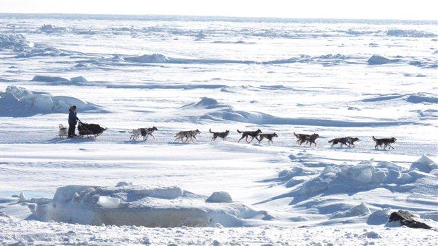 Traîneau à chiens sur la mer de Béring