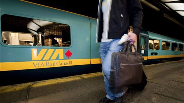A passenger with a suitcase walks beside a stationary train.