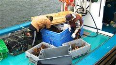 Pêcheurs de homard, Nouvelle-Écosse