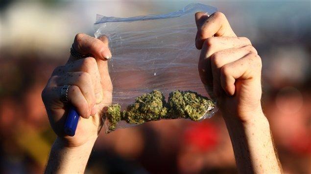 Les policiers souhaitent pouvoir donner des amendes pour la possession de petites quantités de marijuana.