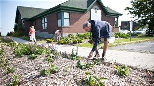 Des villes troquent les aménagements floraux contre des plantes comestibles