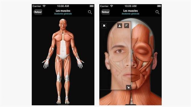 Capture d'écran de l'application Corps humain virtuel