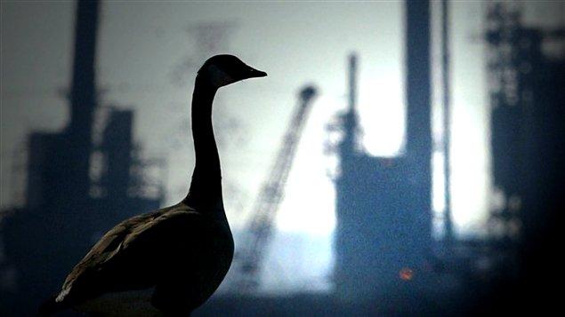 Image tirée du reportage de Raymond Saint-Pierre sur l'environnement (série Le Canada de Stephen Harper)