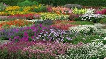 Un v ritable jardin botanique qu bec ici radio for Jardin veritable