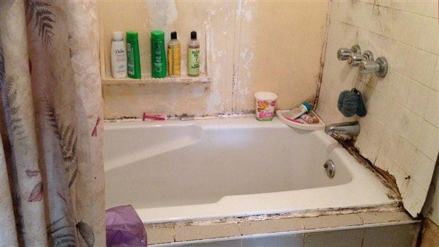 Moisissures dans la salle de bain de Mme Charleston