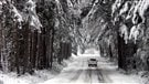 Conduire sur les routes enneigées
