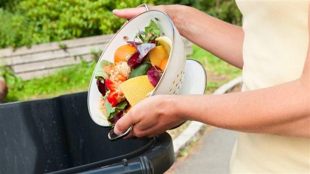Des fruits et légumes sont jetés à la poubelle