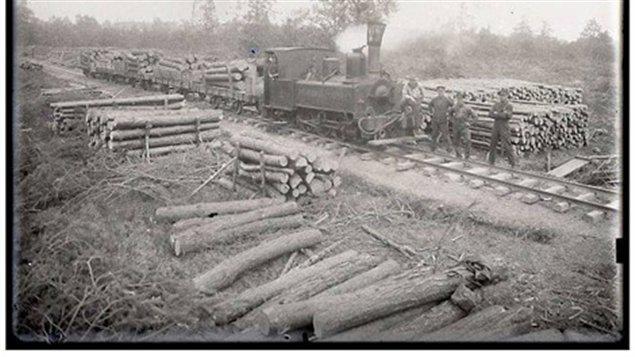 Le savoir-faire des bûcherons canadiens, l'importance des moyens techniques et logistiques déployés ont beaucoup impressionnés les pays alliés : les Canadiens avaient conçu de vastes scieries démontables rapidement, des voies de chemin de fer provisoires démontables rapidement, et plusieurs types d'équipements qui témoignaient de la grande technicité, déjà à cette époque de la foresterie canadienne.