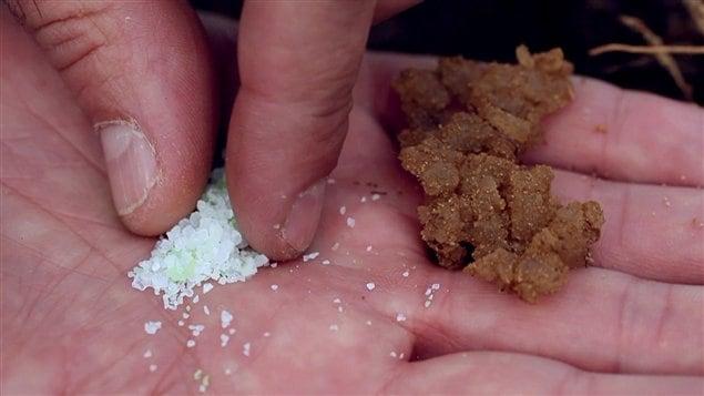 L'« hydrorétenteur fertilisant » inventé par Philippe Ouaki Di Giorno.  Sa formule et son procédé de fabrication sont gardés secrets.