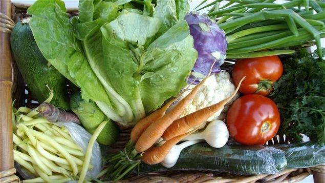 Des légumes biologiques
