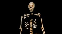 Un squelette vieux de 400 000 ans mis au jour à Sima de los Huesos en Espagne.