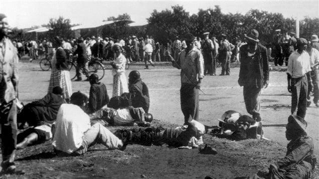 Une manifestation contre l'apartheid le 21 mars 1960 est violemment réprimée par la police. Au moins 180 personnes sont blessées et 69 tuées. La journée internationale de lutte contre les discriminations raciales a été proclamée en 1966 pour commémorer ce jour de massacre à Sharpeville en Afrique du Sud.