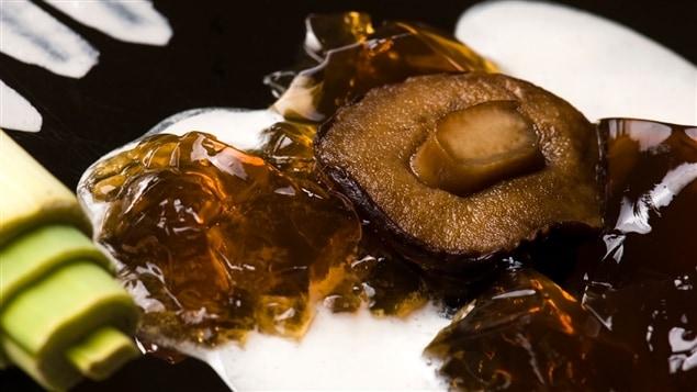 Cuisine on jette tout et on recommence m dium large - Cuisine moleculaire quebec ...