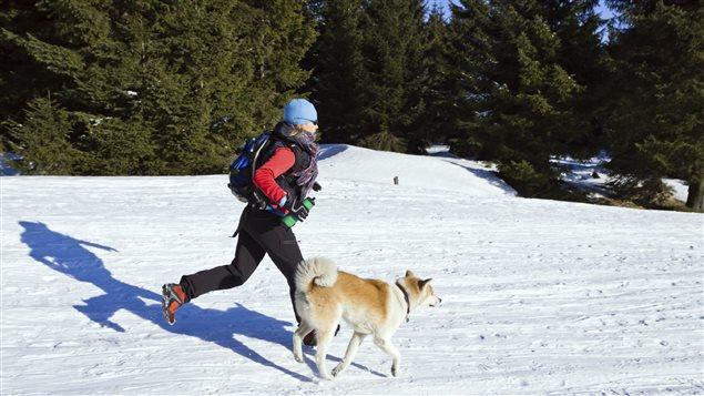 Courir avec son chien l'hiver