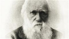 Le naturaliste Charles Darwin.