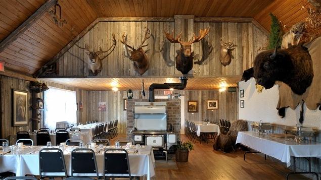 La fascination des europ ens pour le bison bien dans son for La salle a manger de francis jammes
