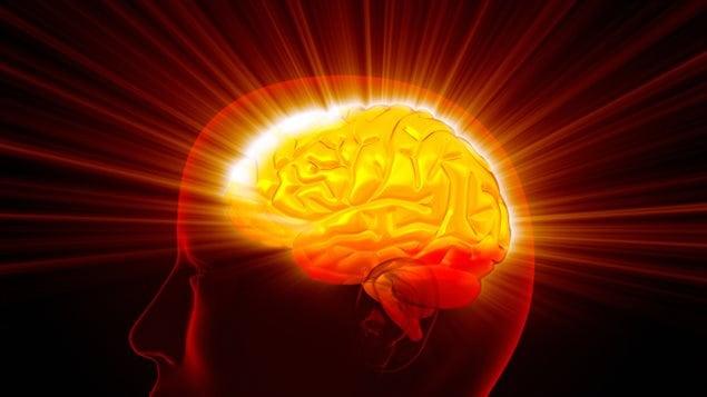 Représentation d'un cerveau