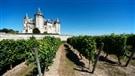 La Loire, ses cépages et ses vins blancs (2014-10-10)