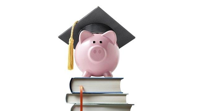 Les jeunes Canadiens sont avec les jeunes Coréens et Japonais les citoyens les plus éduqués de la planète. Le pourcentage de diplômés au Canada est de plus de 50 % en moyenne alors que dans les autres nations de l'OCDE près de 35 % des jeunes de 25 à 34 possède un diplôme universitaire.