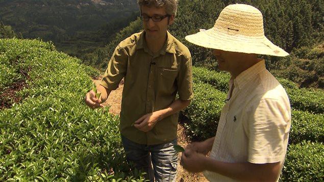 L'importateur de thé Jasmin Desharnais chez un de ses fournisseurs chinois, dans le Zhejiang.
