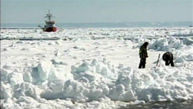 Des chasseurs sur la banquise dans la Golfe Saint-Laurent