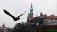 Les Journ�es mondiales de la jeunesse � Cracovie