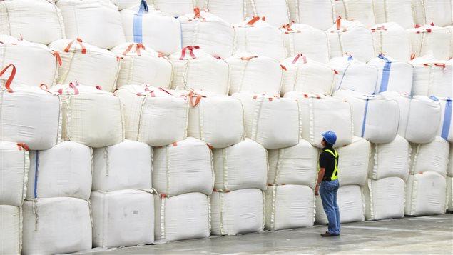 Sacs de sucre dans une usine
