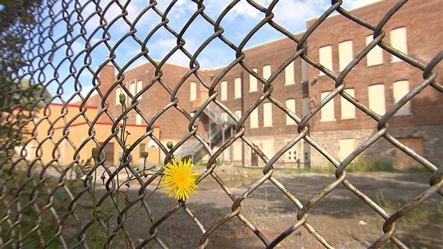 Plusieurs écoles de la Commission scolaire de Montréal devront refuser des enfants.