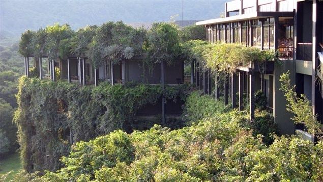 L'hôtel Kandalama, au Sri Lanka, conçu par l'architecte Geoffrey Bawa