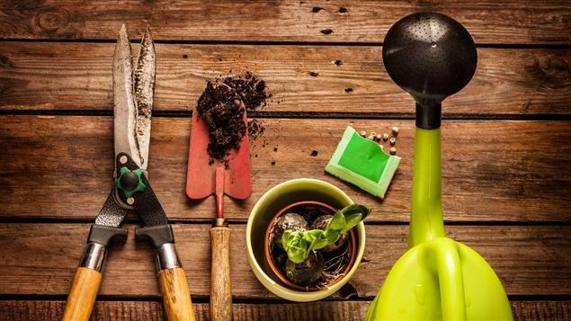 Quelques outils de jardinage