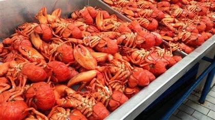 La promotion du homard des Maritimes pourrait être améliorée, selon l'industrie - ICI.Radio-Canada.ca