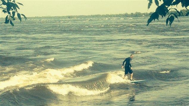Surf dans le fleuve à Montréal