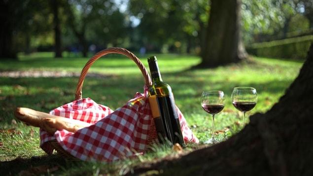 Un pique-nique dans un parc