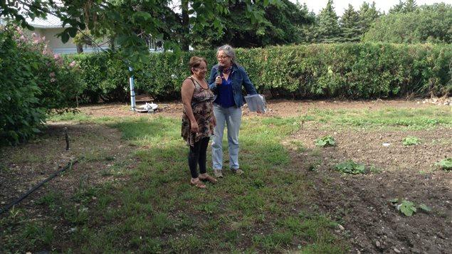 Savez vous planter des choux pour faire un monde ici for Jardines de soraya
