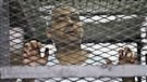 John Baird s'envole pour l'Égypte afin d'obtenir la libération de Mohamed Fahmy
