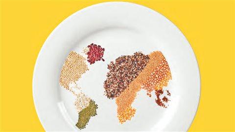 La sécurité alimentaire est un problème mondial selon l'ONU.