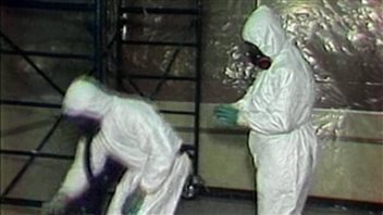 Workers removing asbestos from buildings must wear full protective clothing to prevent any inhalation of the dangerous fibres.