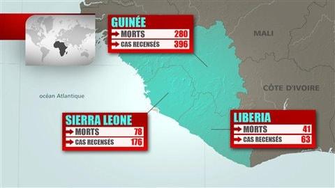Cas détectés de fièvre Ebola en Afrique de l'Ouest