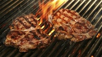 33 barbecues testés