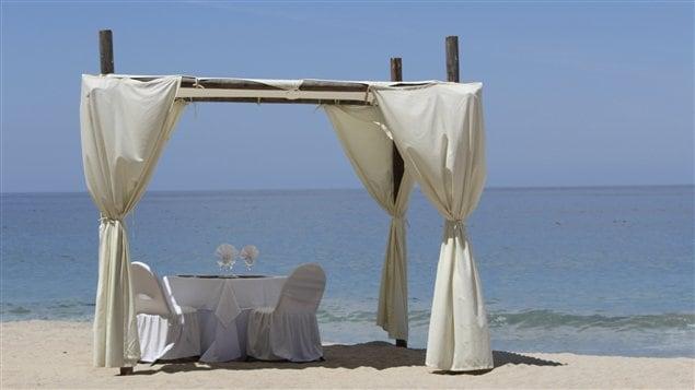 Diner fin et grands crus sur une plage privée? C'est possible avec Pure Entertainment Group.
