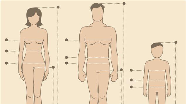 D clinaisons et marchandisation du corps humain les for A l interieur du corps humain