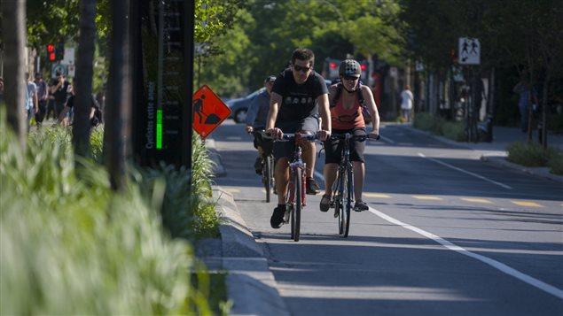 Des cyclistes sur la rue Laurier, � Montr�al