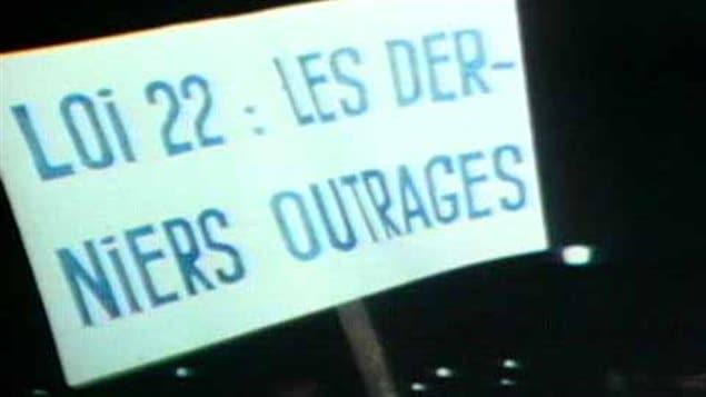 Adoptée le 30 juillet 1974, la Loi sur la langue officielle, communément appelée loi 22, remplace la contestée Loi pour promouvoir la langue française au Québec, datant de 1969.