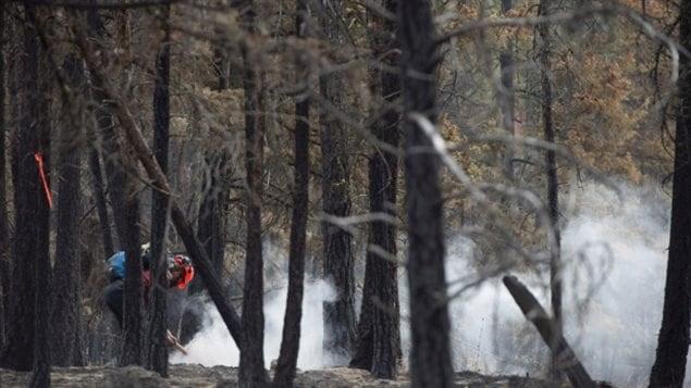 Incendios forestales en Columbia Británica.