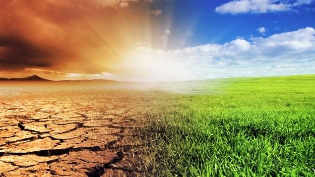 Terres asséchées au soleil