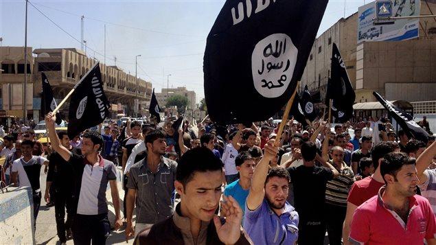 Des sympathisants de l'État islamique lors de la prise de la ville irakienne de Mossoul, en juin 2014.