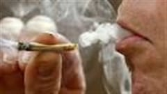 Effets du cannabis sur les adolescents