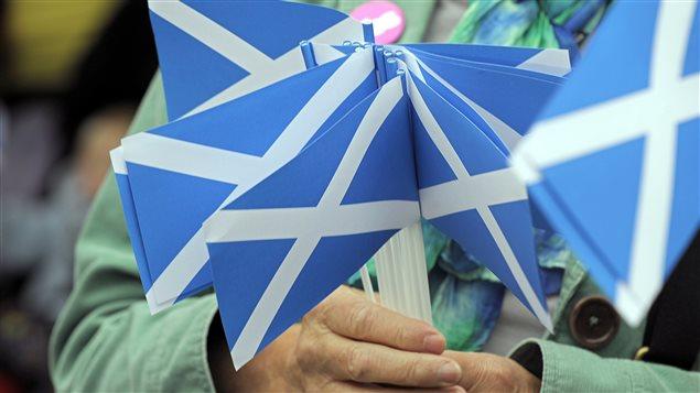 Militant indépendantiste présentant de petits drapeaux écossais.